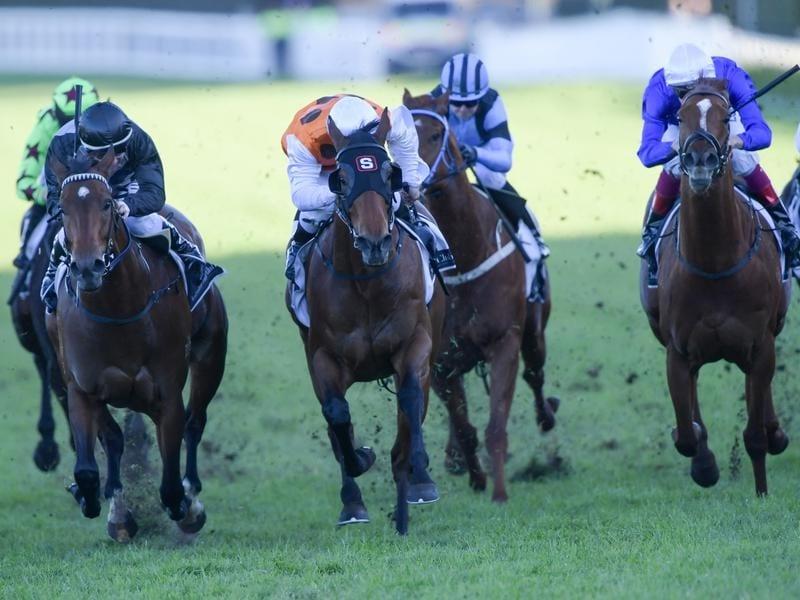 Jockey Cristian Reith rides Invictus Salute to victory.