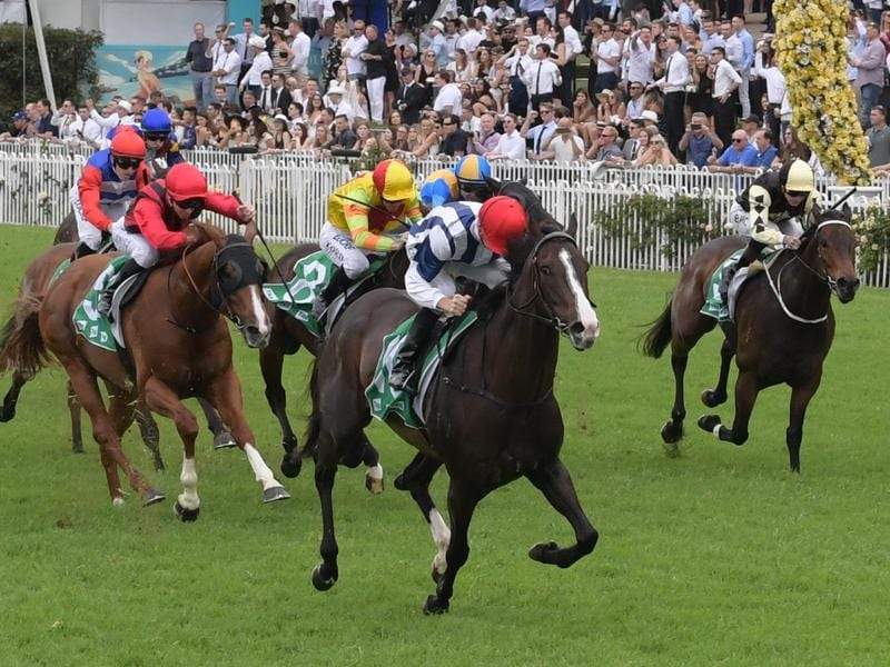 Cradle Mountain in winning form.
