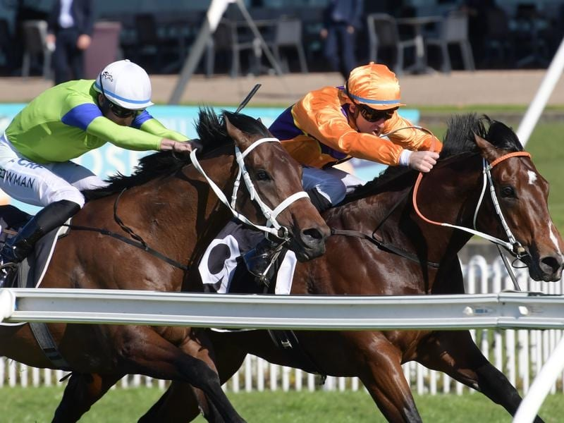 Spend (right) wins at Rosehill.