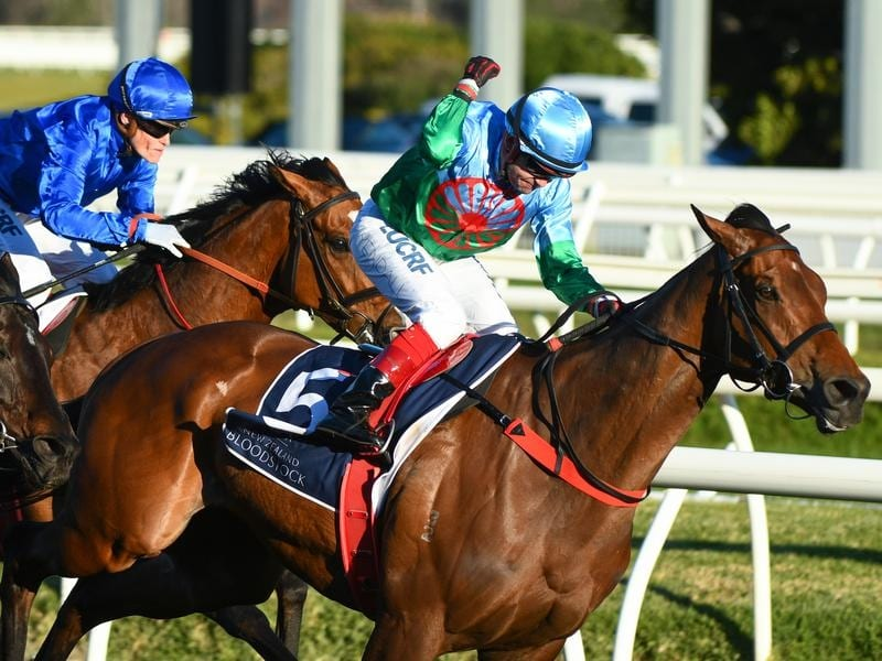 Scales Of Justice wins the Memsie Stakes at Caulfield.