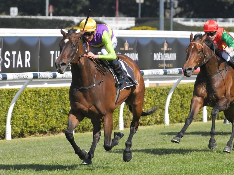 Connemara wins at Randwick.