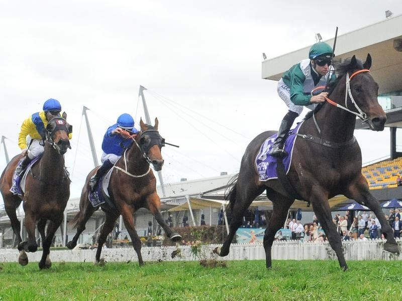 Exceedance wins the San Domenico Stakes at Rosehill.