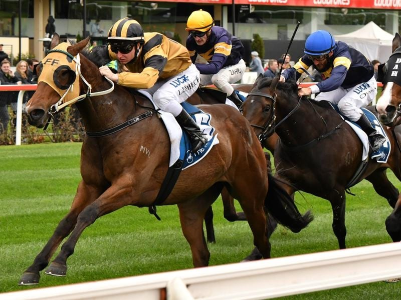 Condo's Express wins at Moonee Valley.