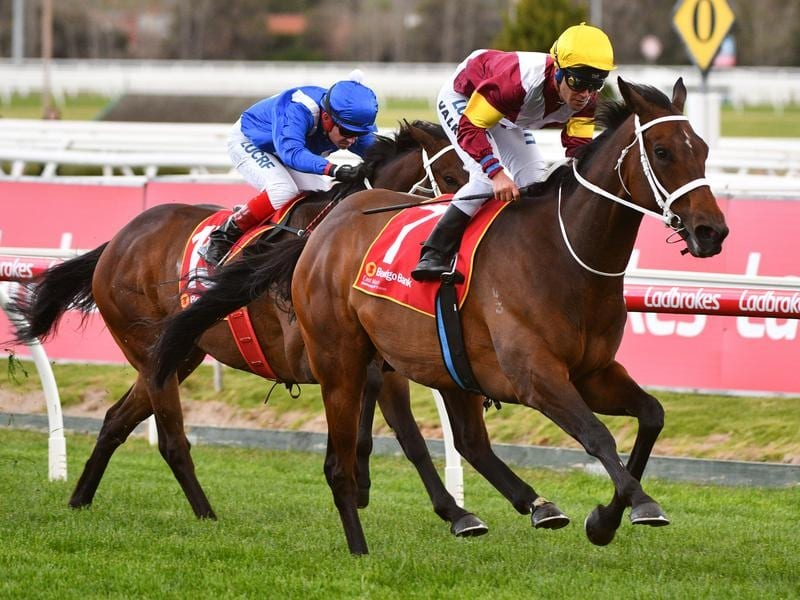 Brimham Rocks wins at Caulfield.