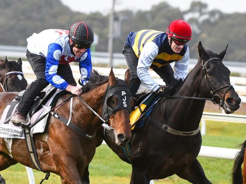Jockey Mark Zahra rides Harbour Views