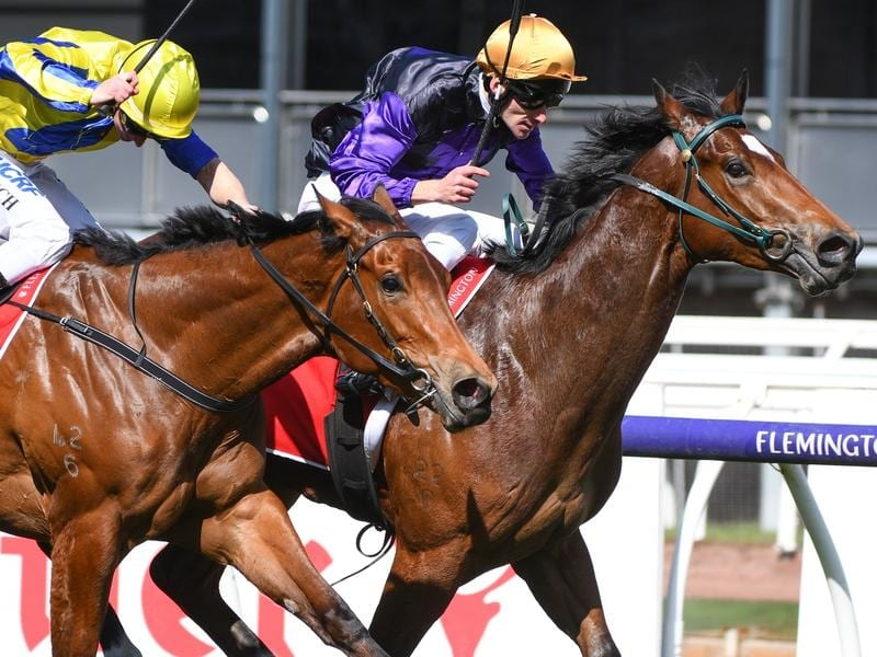 Legionnaire (right) holds on to win at Flemington.