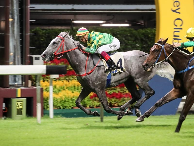 blake shinn/green dispatch (grey)