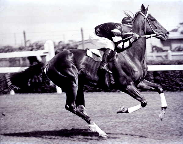 The Melbourne Cup - Phar Lap