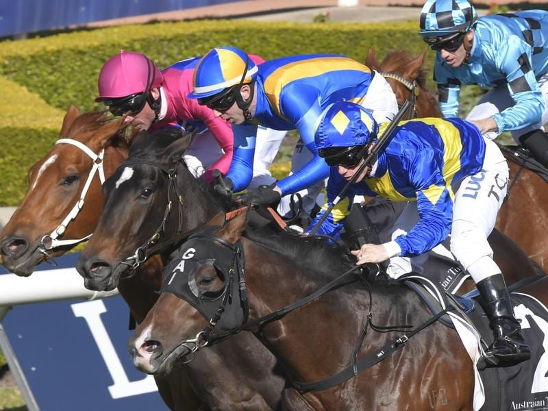 Dawn Passage wins the Rosebud at Rosehill.