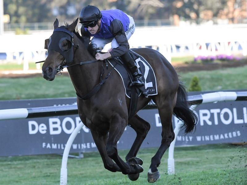 Joshua Parr rides Shadow Hero to victory in race 8 at Rosehill