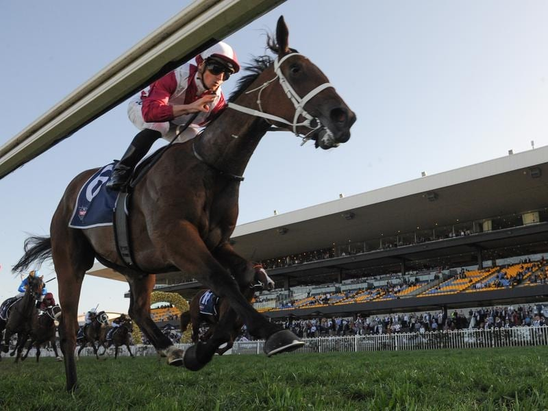 James McDonald rides Arcadia Queen to victory in the Theo Marks Stakes