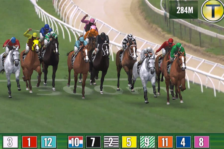 Trackside virtual horse racing