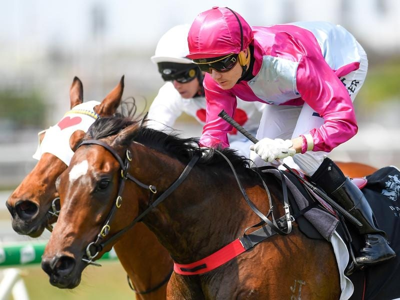 Baccarat Baby makes a winning return to racing.