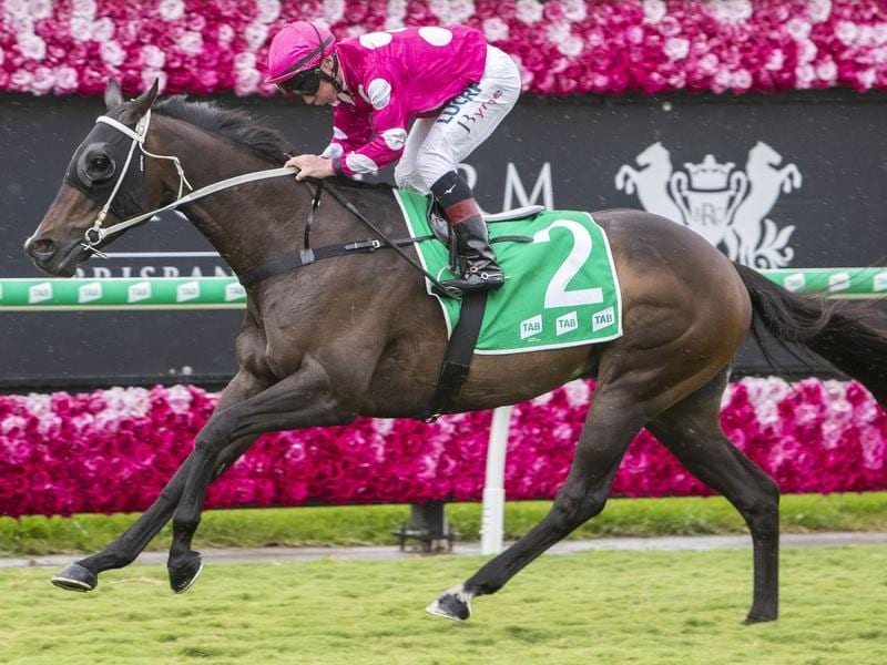Ready For Danger wins at Eagle Farm.