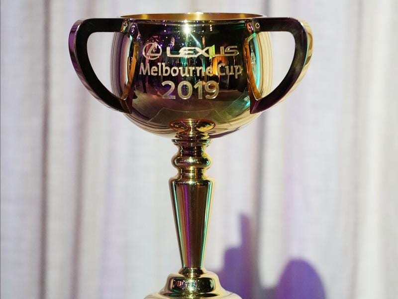 The 2019 Lexus Melbourne Cup trophy