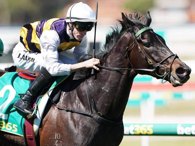 Harbour Views wins at Geelong.
