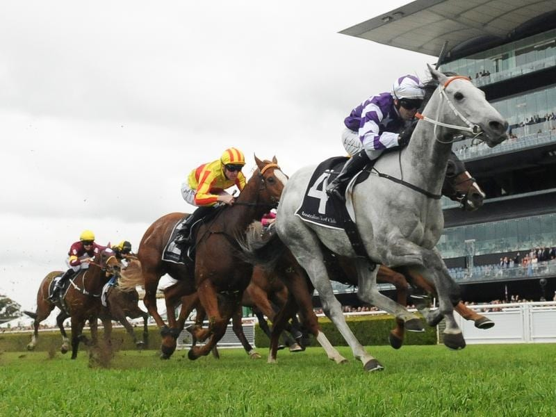 Greyworm wins at Randwick.