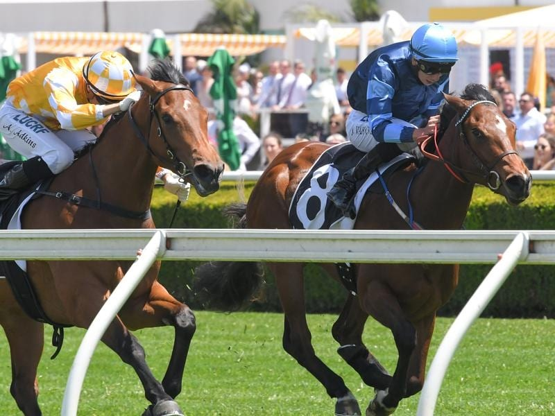 See You Soon (right) wins at Randwick.