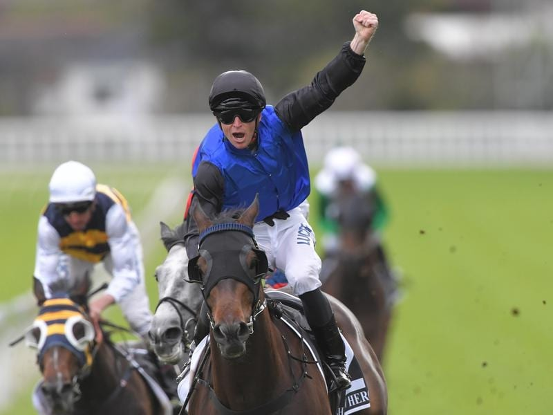 Josh Parr celebrates winning the Spring Champion Stakes.