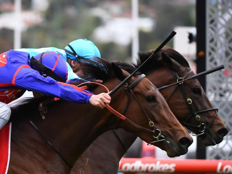 A dead-heat in the Fillies Classic at The Valley.