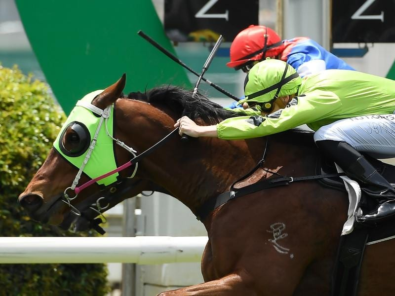 High Cost wins at Doomben.