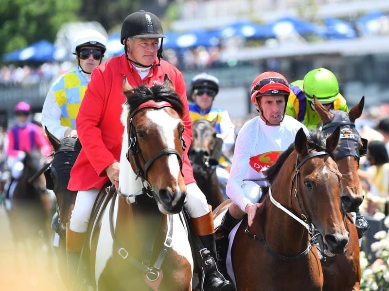 Teleplay returns to scale at Flemington.