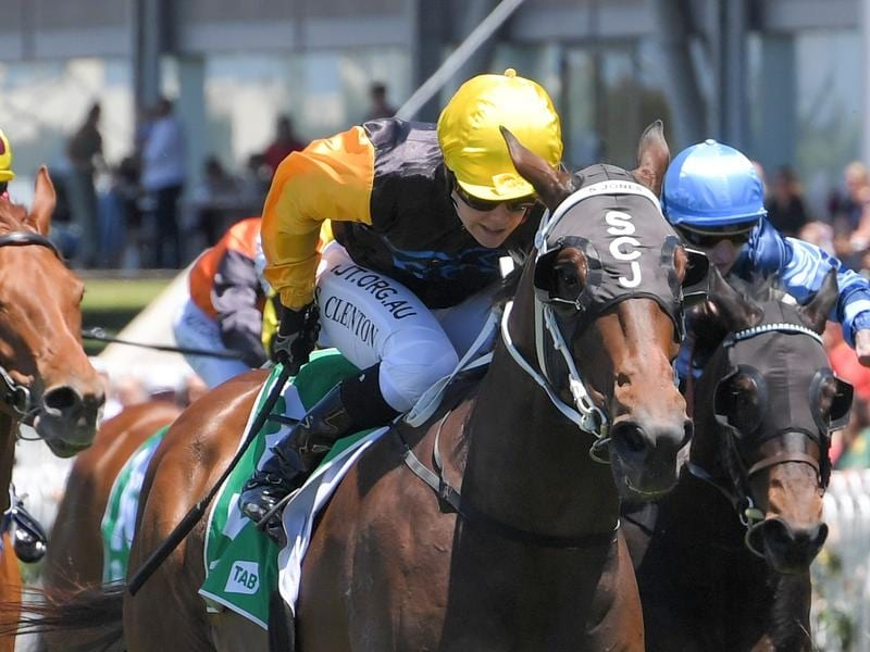 Hit The Target wins at Rosehill.