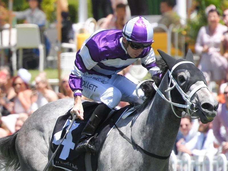 Lucicello wins at Rosehill.