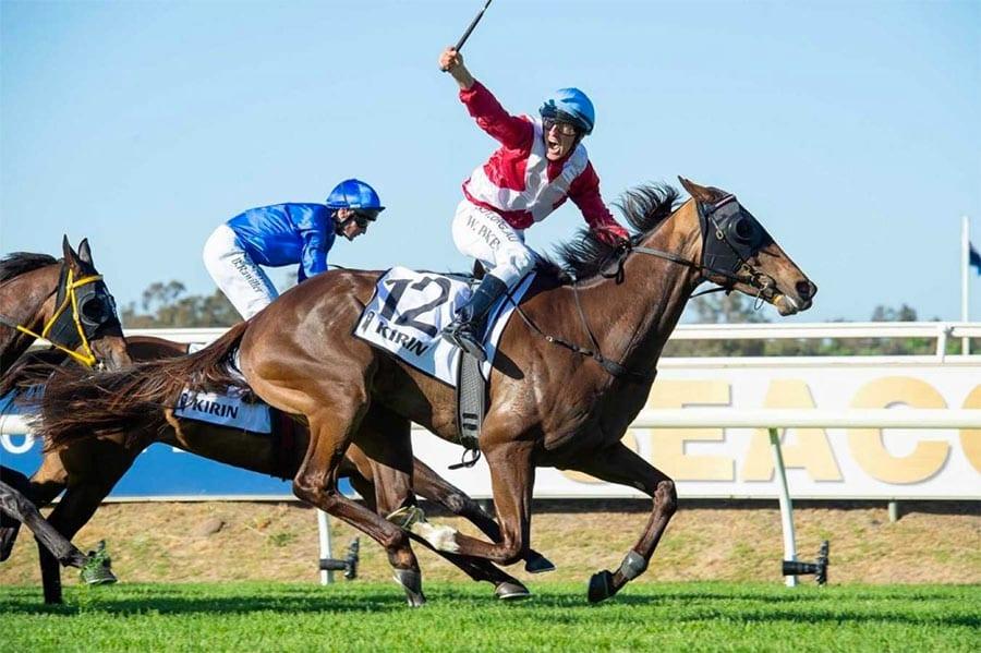 Regal Power horse racing news