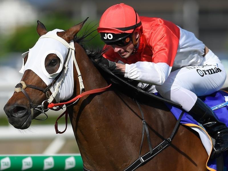 Jockey James Orman rides Niccanova to victory
