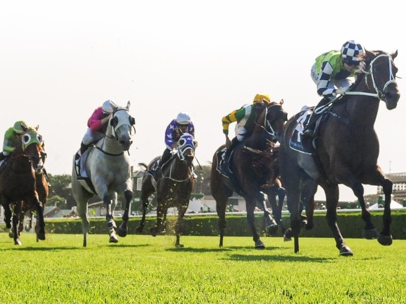 Jockey Kathy O'Hara rides Madame Rouge to victory