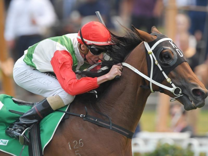 Gunga Din wins at Rosehill.