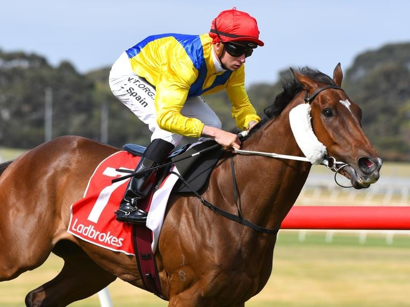 Right You Are wins at Sandown.