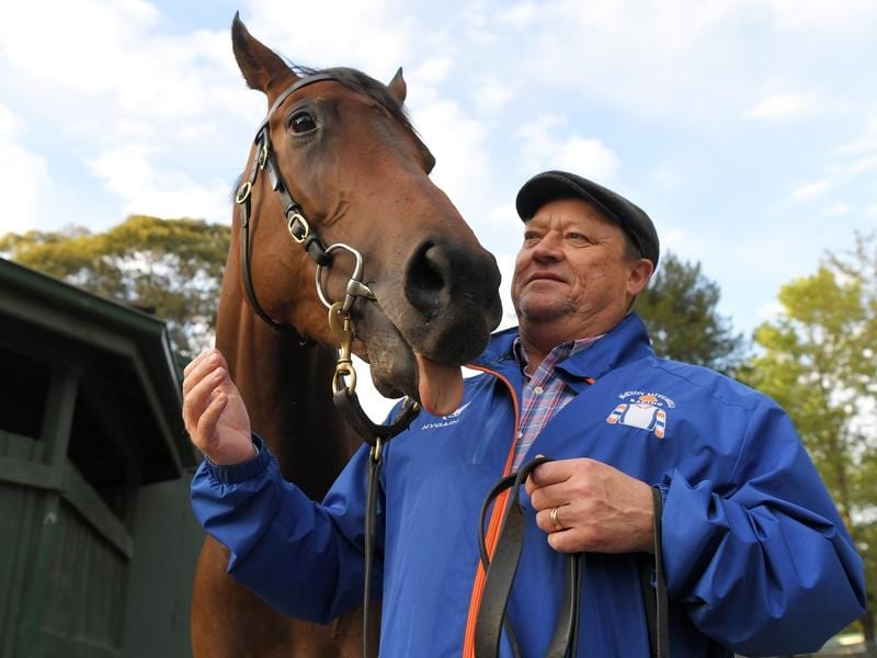 Trainer Tony McEvoy is seen with Sunlight (file image)