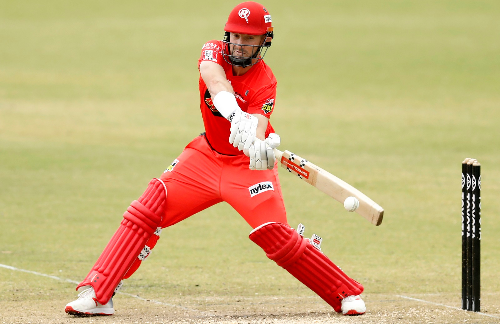Shaun Marsh Melbourne Renegades