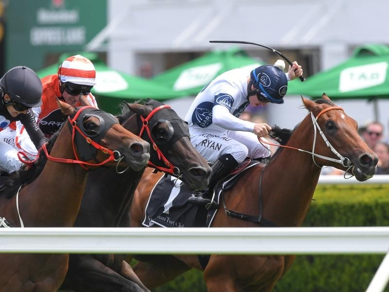 God Of Thunder (right) wins at Randwick.
