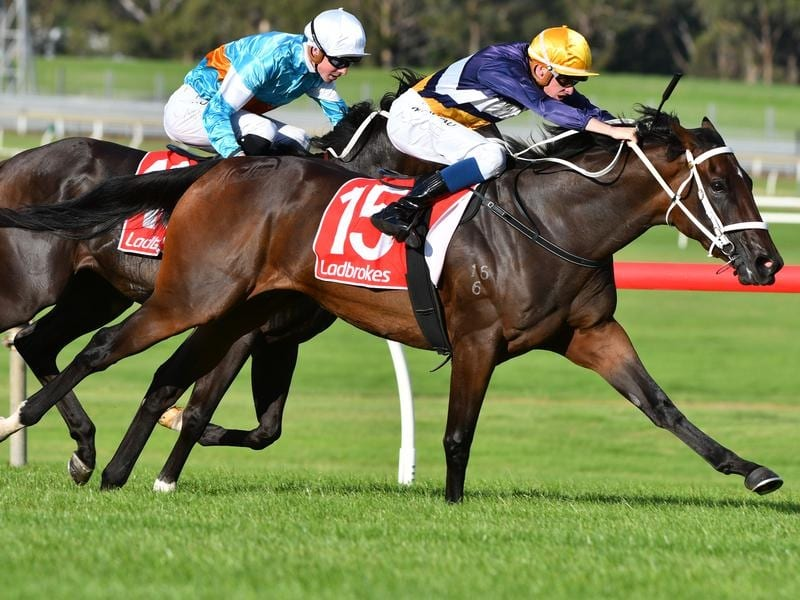 Rich Hips wins at Sandown.