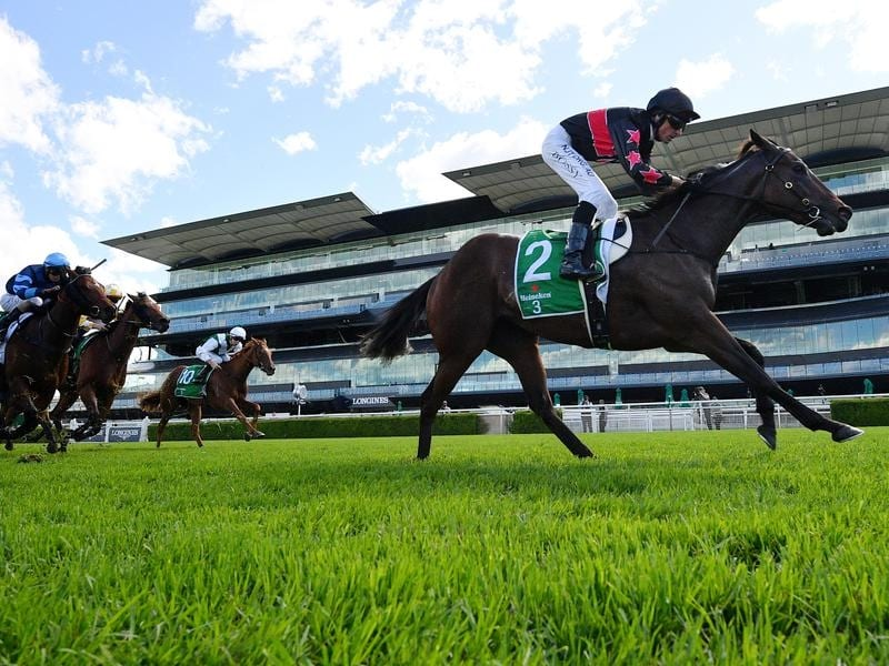 Away Game wins the Percy Sykes Stakes at Randwick.