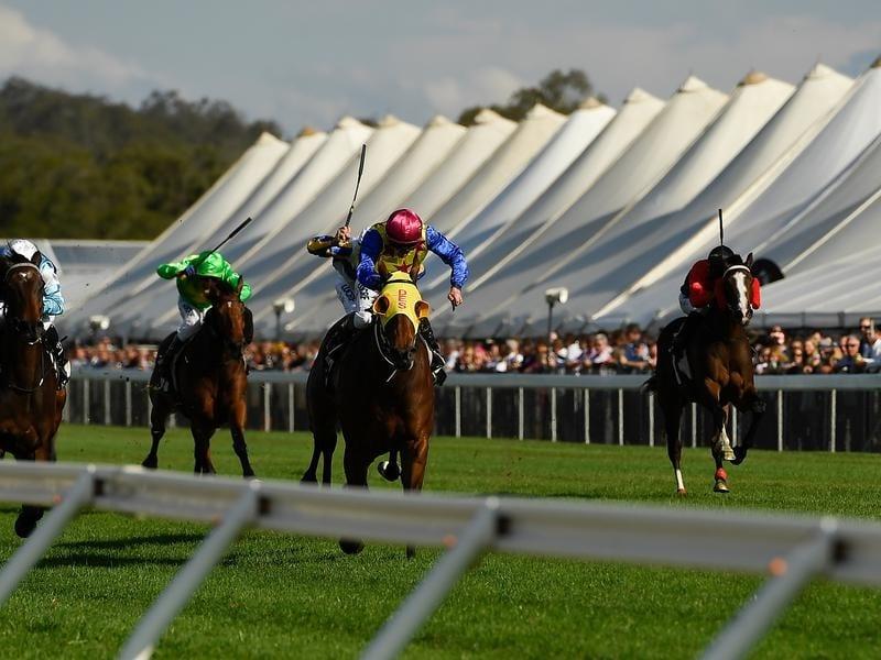 ipswich racecourse