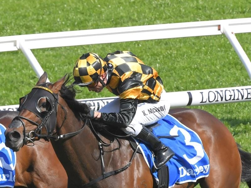 Probabeel is one of the favourites for the ATC Australian Oaks.