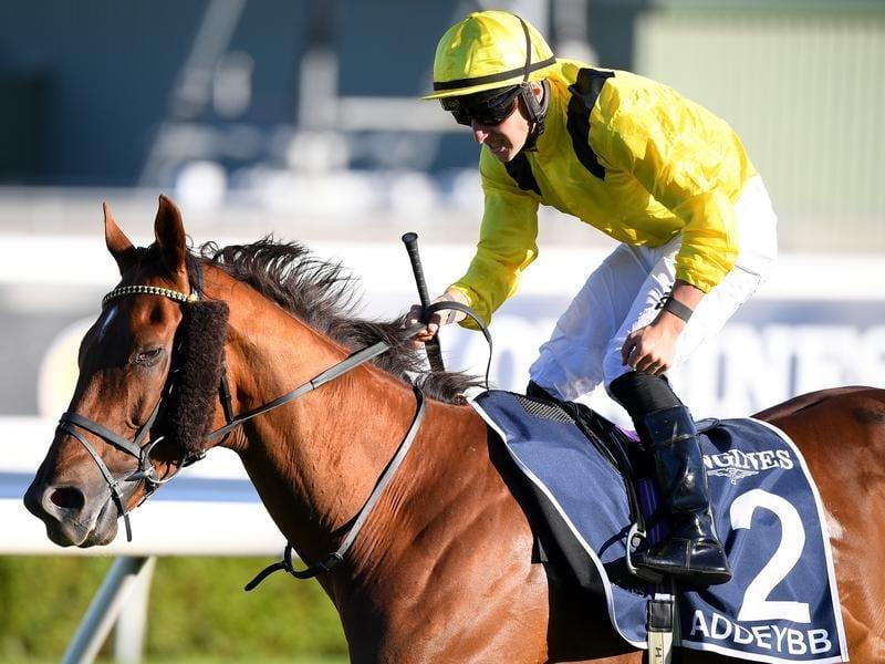 Addeybb wins the Queen Elizabeth Stakes.