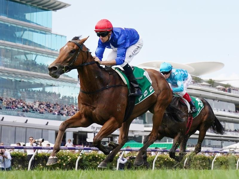 Rubisaki is all the rage for the JHB Carr Stakes at Randwick.