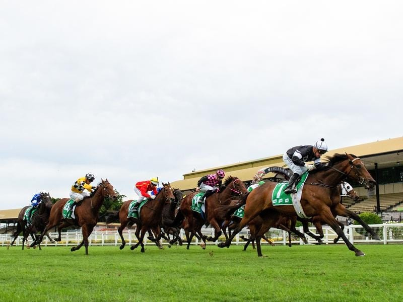 Victorem wins the Victory Stakes.