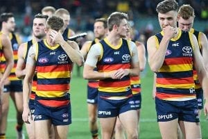 Adelaide AFL betting