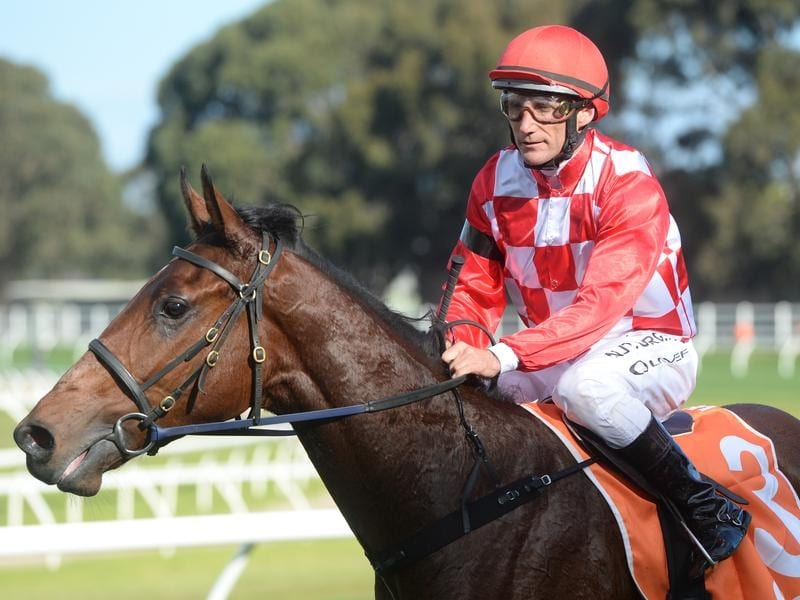 Saltpeter after winning at Caulfield with Damien Oliver in the saddle.