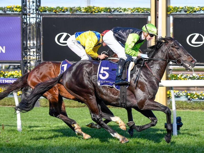 Persan wins at Flemington.