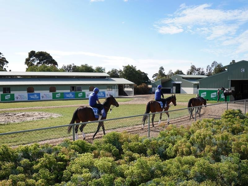 RV will open up quarantine at Werribee for international horses