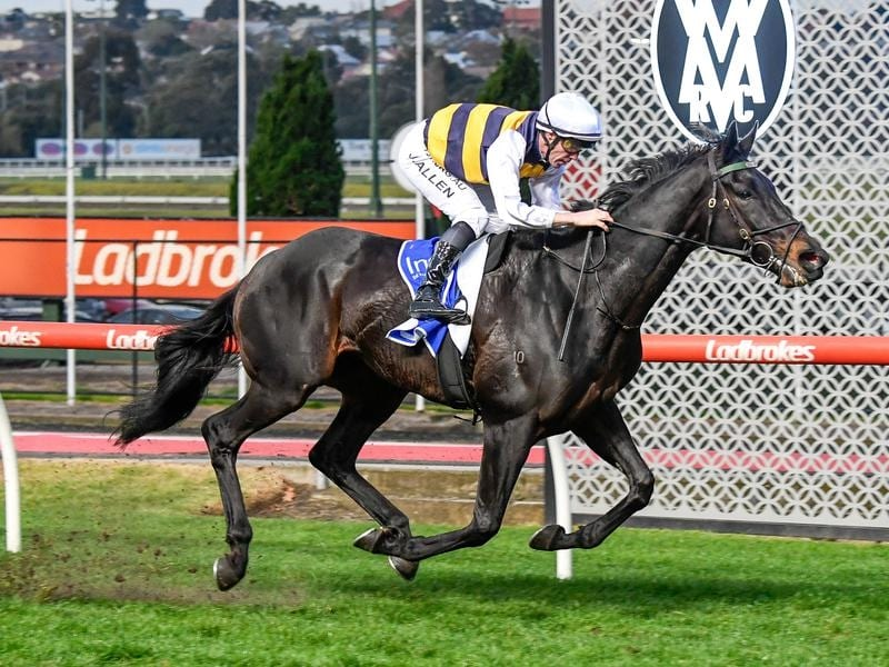 Harbour Views wins at The Valley.