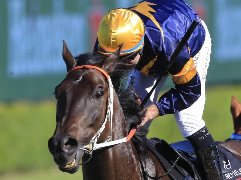 Mount Popa wins at Randwick.