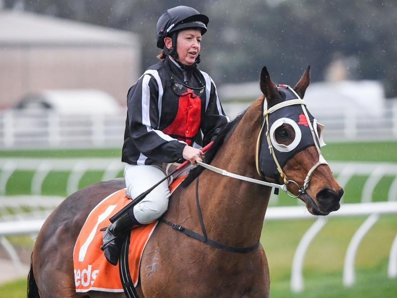 Jungle Edge and Jade Darose target the Bletchingly Stakes